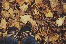 I <3 Autumn / My favorite season