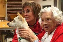 Hund (/djur) i vården (AAT) / Animal assisted therapy, therapy dog, terapihund, vårdhund