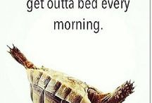 True Story!..