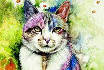 Pretty little cats / Cute , funny,sweet  cats , kittens / by TEE (Teena ) Baker