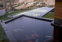 koi pond / by Stephanie VanWells