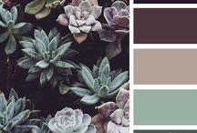 barevné schéma