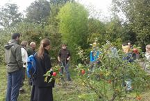 Introduction to Permaculture Design with Aranya / Mon 31st October - Thu 3rd November 2016 This course at our training centre in Hampshire covers the key principles of Permaculture and how we can apply them in redesigning our homes and gardens to be both more sustainable and abundant. Permaculture is about working with nature to make a better world for us all.