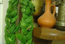Heilpflanzen/Rezepte