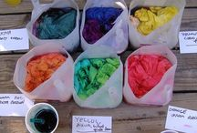 Dyeing to Learn More / by Merilyn Peters