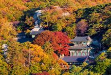ทัวร์เกาหลี วัดมังวอลซา 망월사 Mangwolsa Temple
