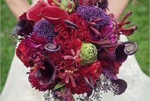 Wedding Awesomeness / by Mary Governali-Garcia