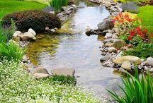 Garden / by Amal Nassir