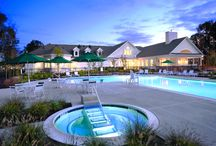 Active Living / Offering low-maintenance homes and resort-style amenities