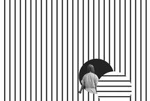 black white stripers