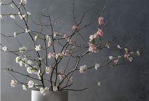 Japanse bloemen