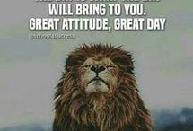 fierce leo