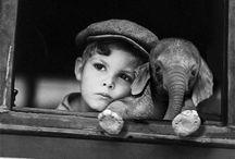 elephantastic / by Natalie Cambata
