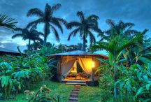 Lombok Yoga EcoCamp Dream