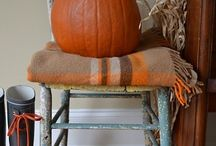 Autumn Decorations / How to bring color and nature into my home.