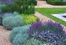 Cool garden designs