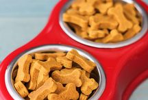 Doggie Food& Treat Recipes