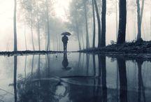 Rain Portraits