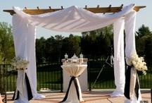 Wedding Ideas / by Carys Wheeler