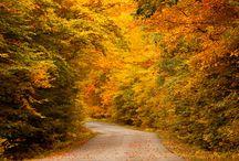 Ontario Hikes