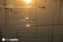 sunset / Kuvattu järven pintaa auringonlaskun aikana