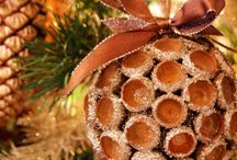 Natural Christmas Ornaments and Crafts / DIY Christmas ornaments and crafts. Using materials from nature to make beautiful rustic Christmas decorations...