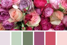 FLOWERS - COLORS / beautiful colored flowers from all parts of the word
