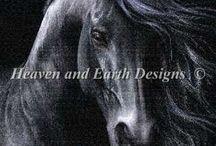 Koně a jednorožci