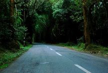 indian road trips / gives you glimpses of what beautiful road trips on beautiful roads of India looks like.