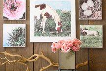 Wall art / by Susan Hillier