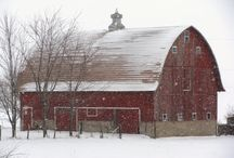 Barns / by Denise Adams