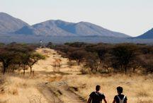 Hiking in Namibia I Wandern in Namibia / The Kambaku Game Reserve ist the perfect place for adventurous and private hiking trips in Namibia. Wild game, top lodge and unspoiled nature in the African bush savannah. ..//.. Kambaku ist der perfekte Ort für Wandersafaris und Wanderungen in der Buschsavanne Afrikas: markierte Wanderwege, unberührte Natur, wilde Tiere und eine hervorragende Unterkunft in Namibia