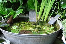 Galvanised tub pond