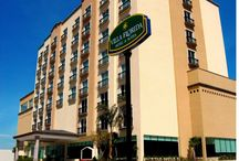 Hotel Villa Florida & Suites