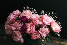 Kukkasia!