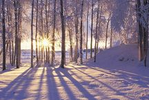 """Winter / """"I pray this winter be gentle and kind--a season of rest from the wheel of the mind. """" ~John Geddes #winter #winterseason"""