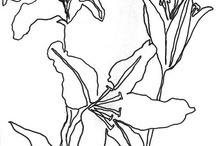 continuous line drawing / ideas to try as continuous line stitching on a quilt