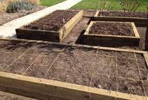 Vege Garden Design Ideas