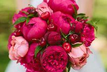 flori , buchete