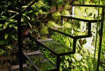 Wnętrza zieleń