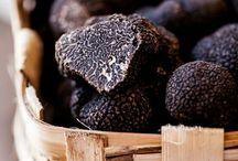 truffe passion