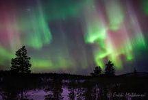 Northern lights / Aurora