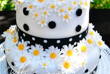 Cake / by Maddalena