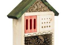 Ola i domki dla owadów...