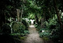 The Magic of Highgate Cemetery