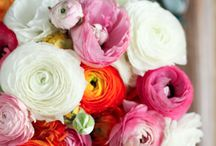 Wedding Bouquets / Wedding Bouquet Inspirational photos from Pinterest findings that I see on my journey of looking at flower bouquets I like. Enjoy, Kamini X
