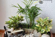 garden DIY (околосадовое мастер-классы)