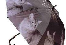 Cat Umbrellas