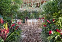 ARTFLOWER Rain Forest/Andaz / Photos by the super talented Sylvia Guardia