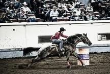 barrel racing / by Nelly Navarrete